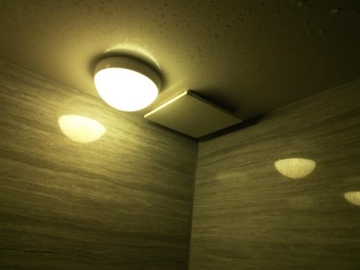 風呂場の換気扇異音 (1)