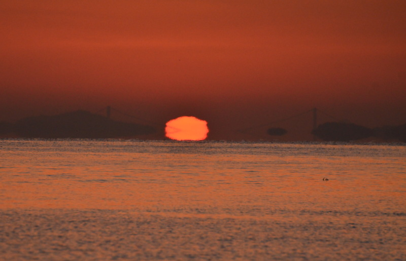 DSC_1884-太陽が