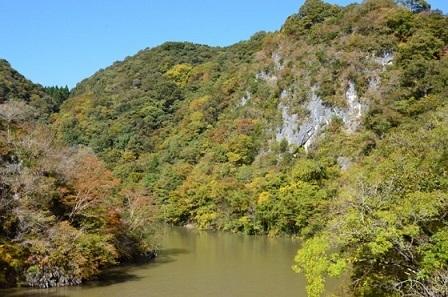神龍湖紅葉林