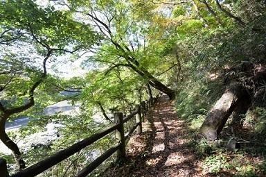 神龍湖遊歩道