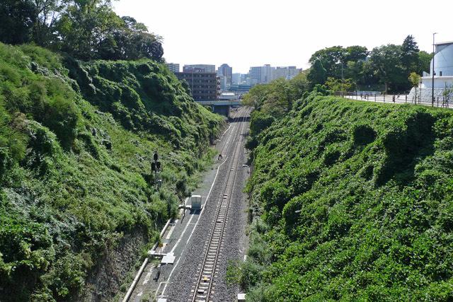 水戸城堀跡