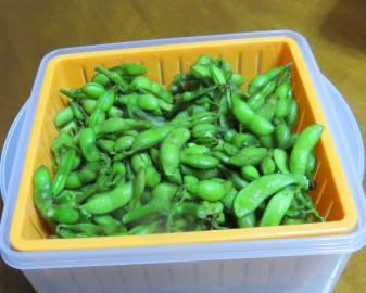 小粒頃豆のエダマメ利用