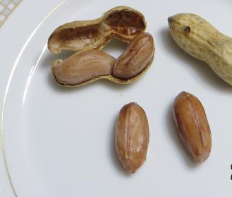 落花生茹で豆