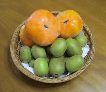 次郎柿とキウイ収穫物