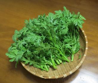 シュンギク収穫物