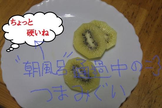 キウイ1021・5_3812 (1)