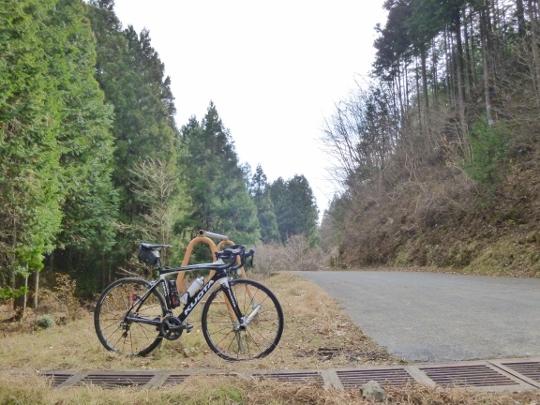 17_12_17-05nariki.jpg