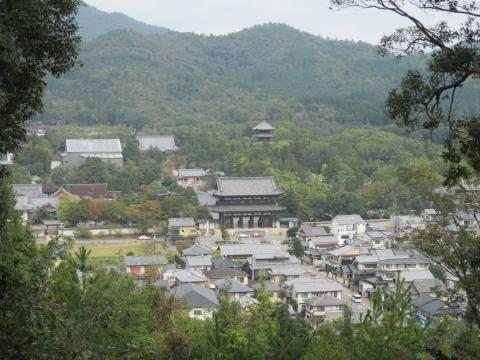 仁和寺が見える