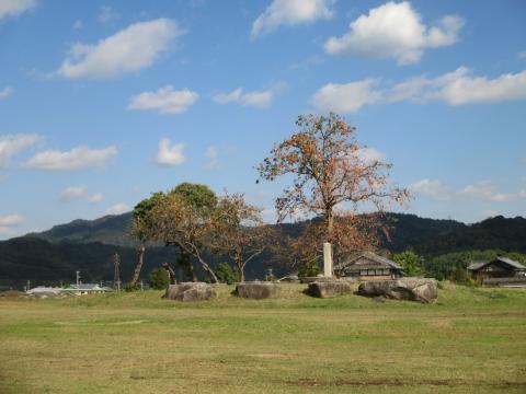 山城国分寺跡