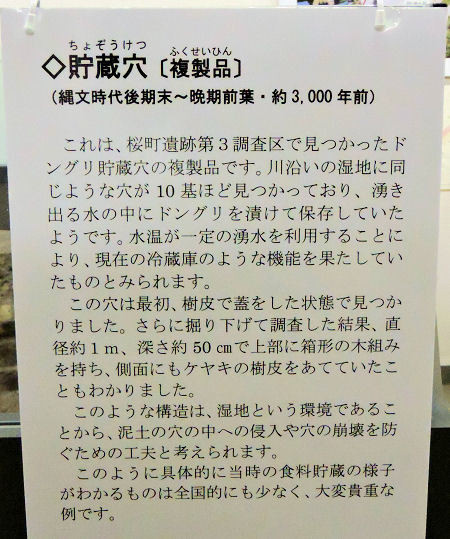170930sakura05.jpg