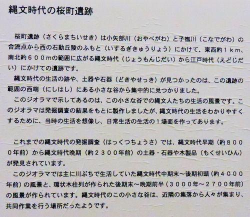 170930sakura15.jpg