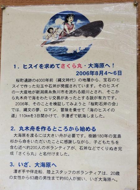 170930sakura43.jpg