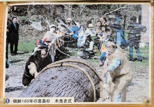 170930sakura45.jpg