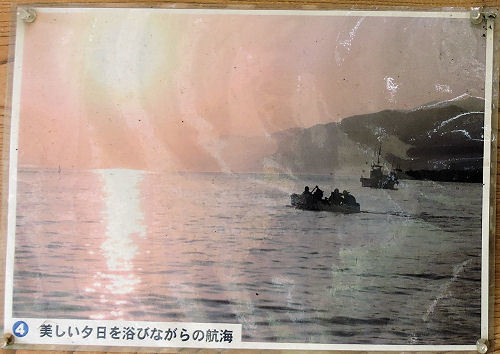 170930sakura48.jpg