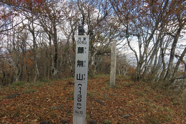 17_11_3_huzinasi (85)(1)
