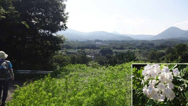 18アサヒビール工場と箱根の山を遠望
