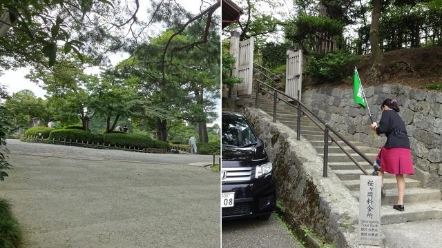 1桜ケ岡入口から入る