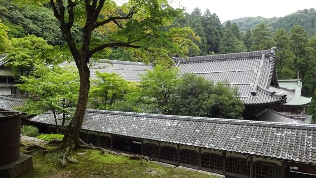 16一文字廊と仏殿を見下ろす(法堂から)
