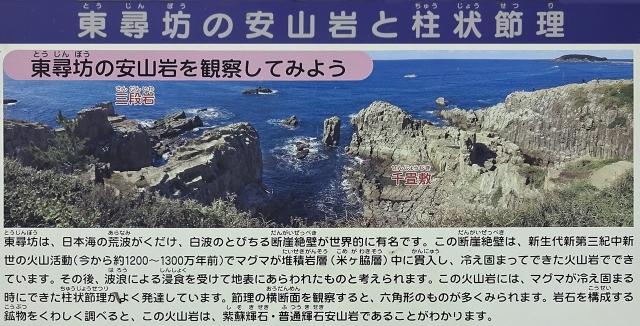 9東尋坊の安山岩と柱状節理