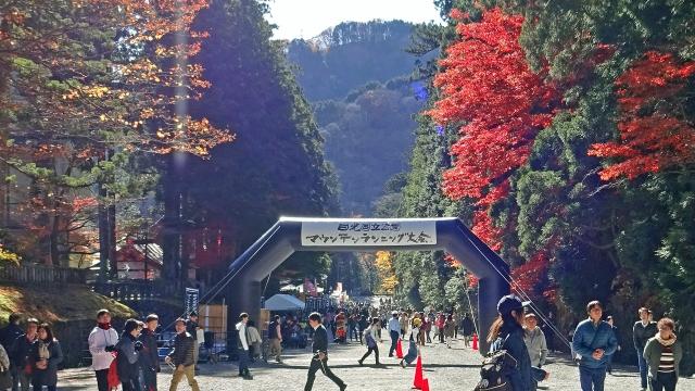 1参道とマウンテンマラソン