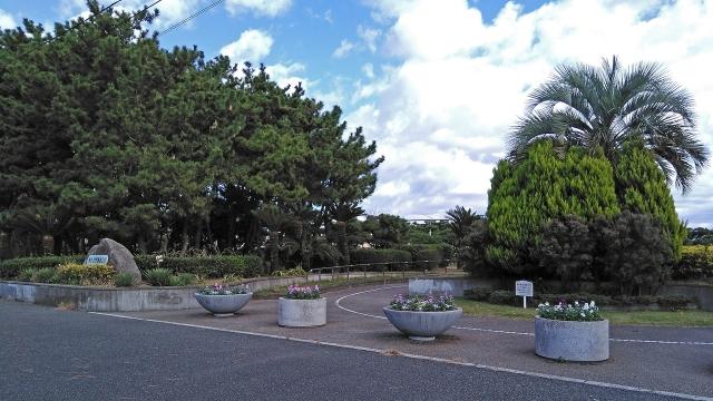 2公園入口の花