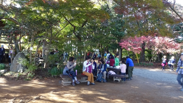 10弘法山公園