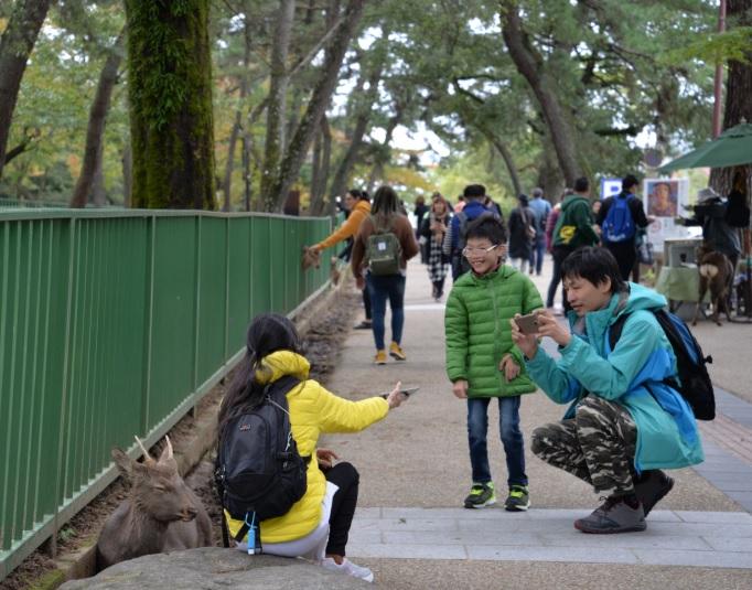 2017-11-3奈良で見た中国人家族連れ