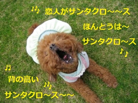 IMG_7308_convert_20171216103737.jpg