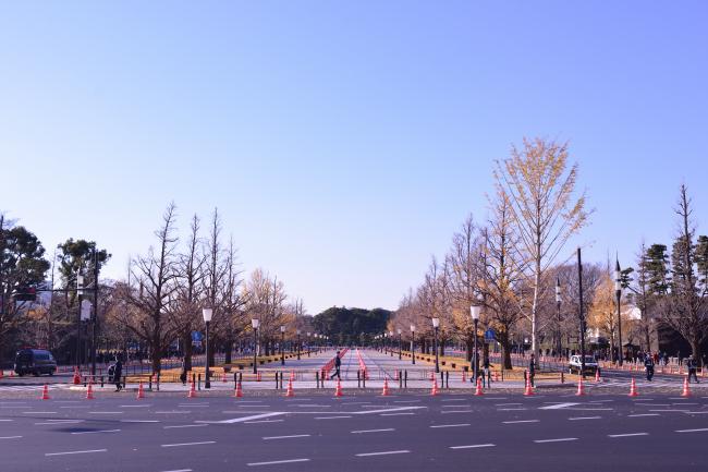 D17_3330.jpg
