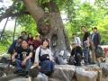 龍宮寺の樹齢1300年の欅の前にて