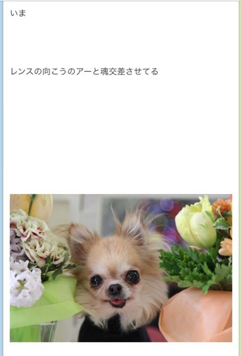 fc2blog_201712161716454fe.jpg