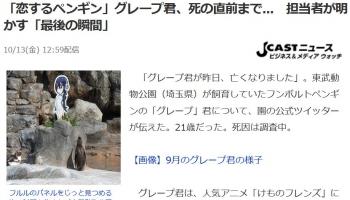 news「恋するペンギン」グレープ君、死の直前まで 担当者が明かす「最後の瞬間」