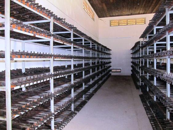 泰さん:カンボジア内戦で使用された大量の自動小銃が保管される倉庫