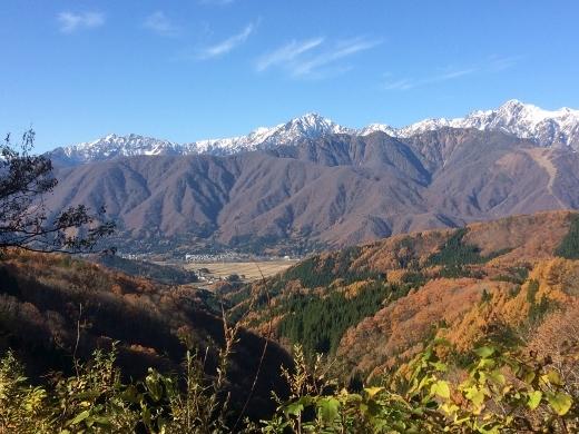 白沢峠からの神城 北アルプス117 (520x390)