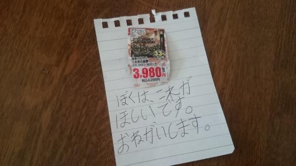 2_171223_01.jpg