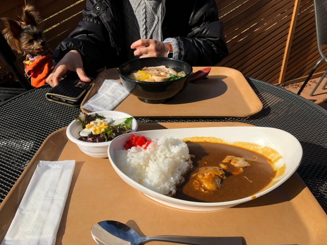batch_022昼飯
