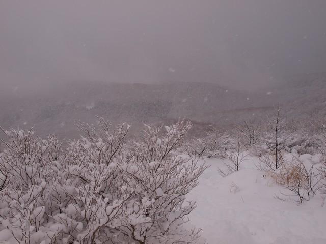 s02雪景色