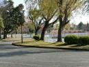CIMG2451公園