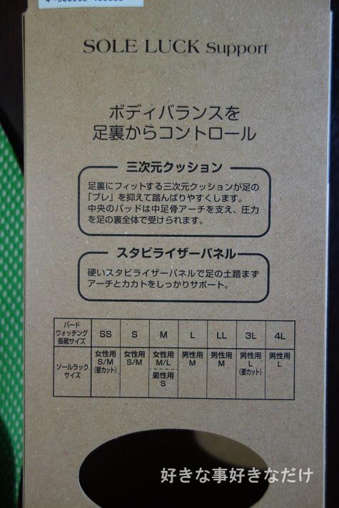 DSC08948のコピー