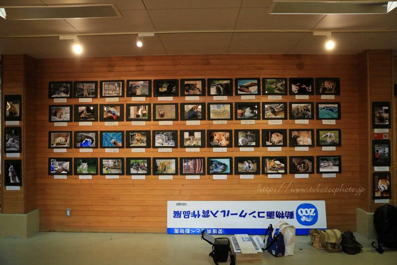 とべ動物園写真コンクール入賞作品展