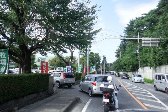 埼玉プチ2(3)