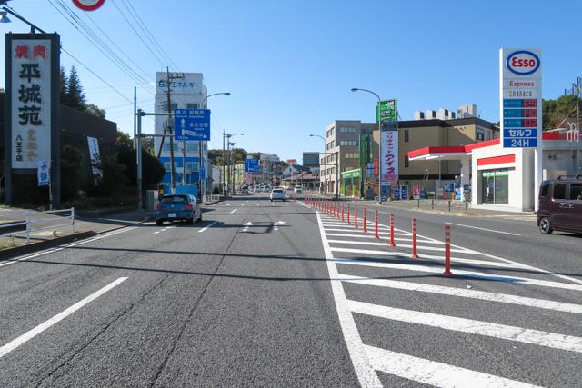 八王子みんみん(1)