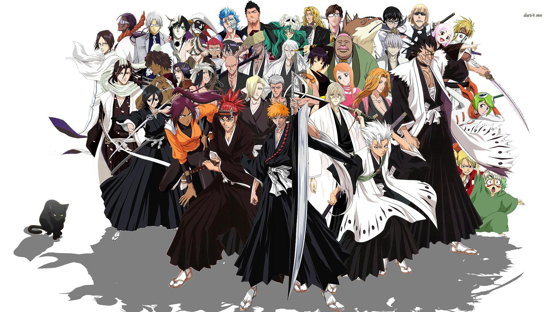Bleach-hero-anime-wallpaper-hd.jpg