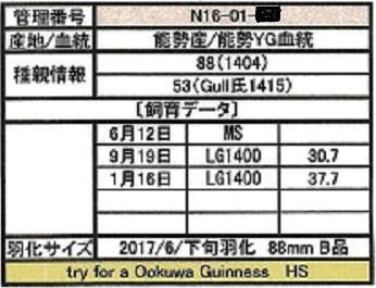 HS1601-20証明書11