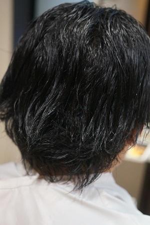 DSC06920.jpg