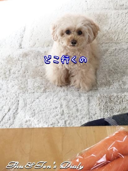 000aIMG_9475.jpg