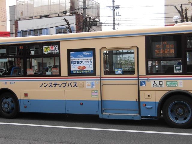CIMG9741.jpg