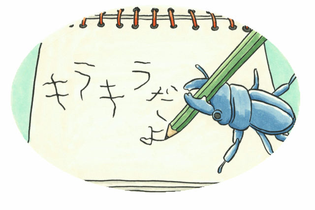 たえちゃんと幼虫_10