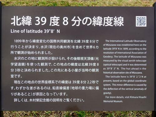 mizusawamugou10.jpg