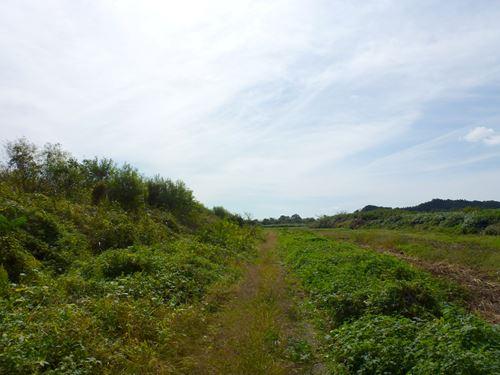 natsukawa7.jpg